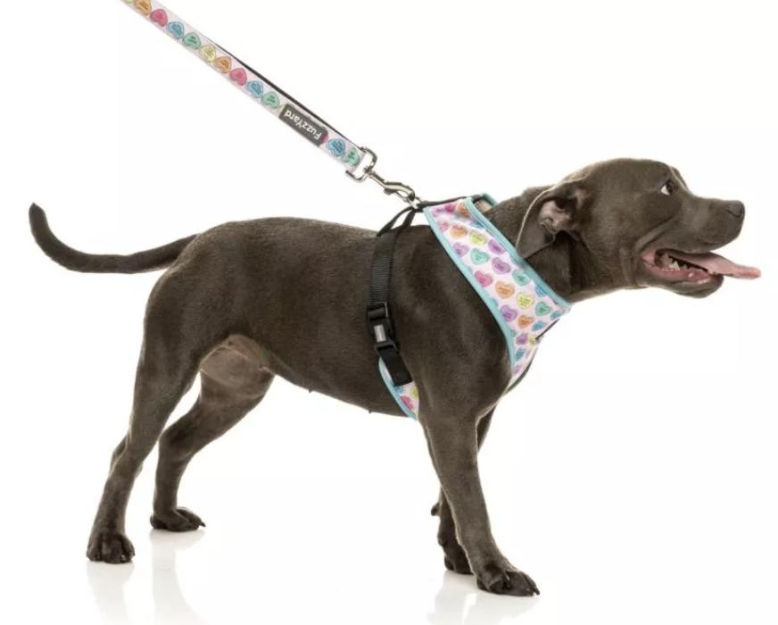 FUZZYARD CANDY HEARTS DOG HARNESS