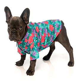 FuzzYard Lahaina Hawaiian Shirt For Dogs | FuzzYard UK