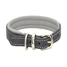 Luxury Grey Padded Leather Dog Collar by Dogs & Horses