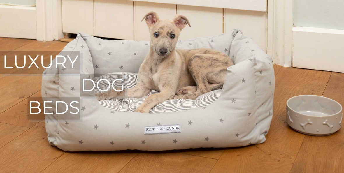 Luxury Dog Beds at Chelsea Dogs