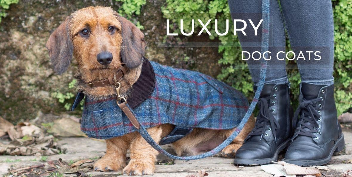 Luxury Dog Coats