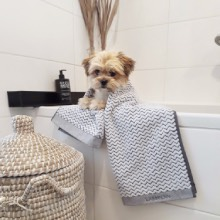 Luxury Puppy Towels Stylish towels for puppies