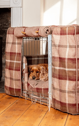 Luxury Dog Beds, Collars and Accessories