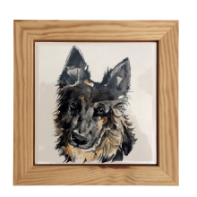 Signs and Plaques For Dogs