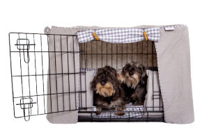 Luxury Dog Crates at Chelsea Dogs