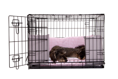 Luxury Dog Crate Half Sets at Chelsea Dogs