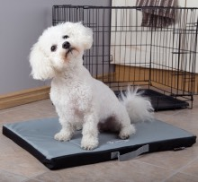 Puppy Crate Mats and Beds