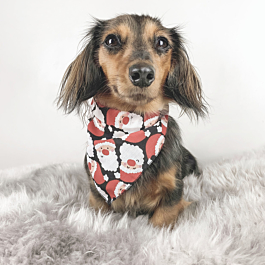 Christmas Clothing For Dogs