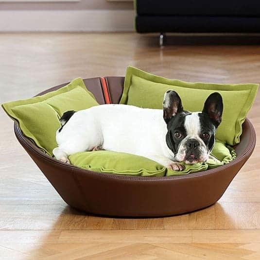 Luxury Leather Dog Beds | Stylish Leather Dog Beds | Chelsea Dogs