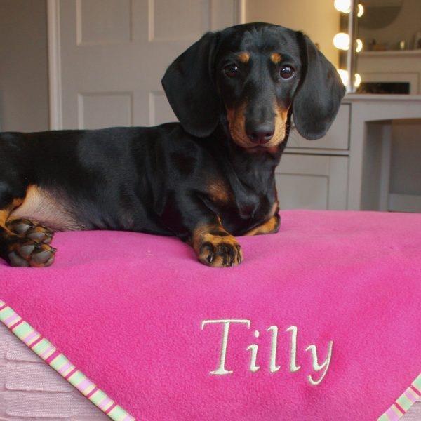 Luxury Puppy Blankets UK