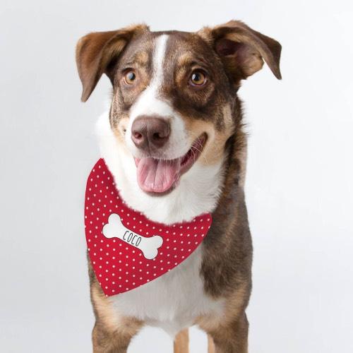 Personalised Dog Bandanas at Chelsea Dogs