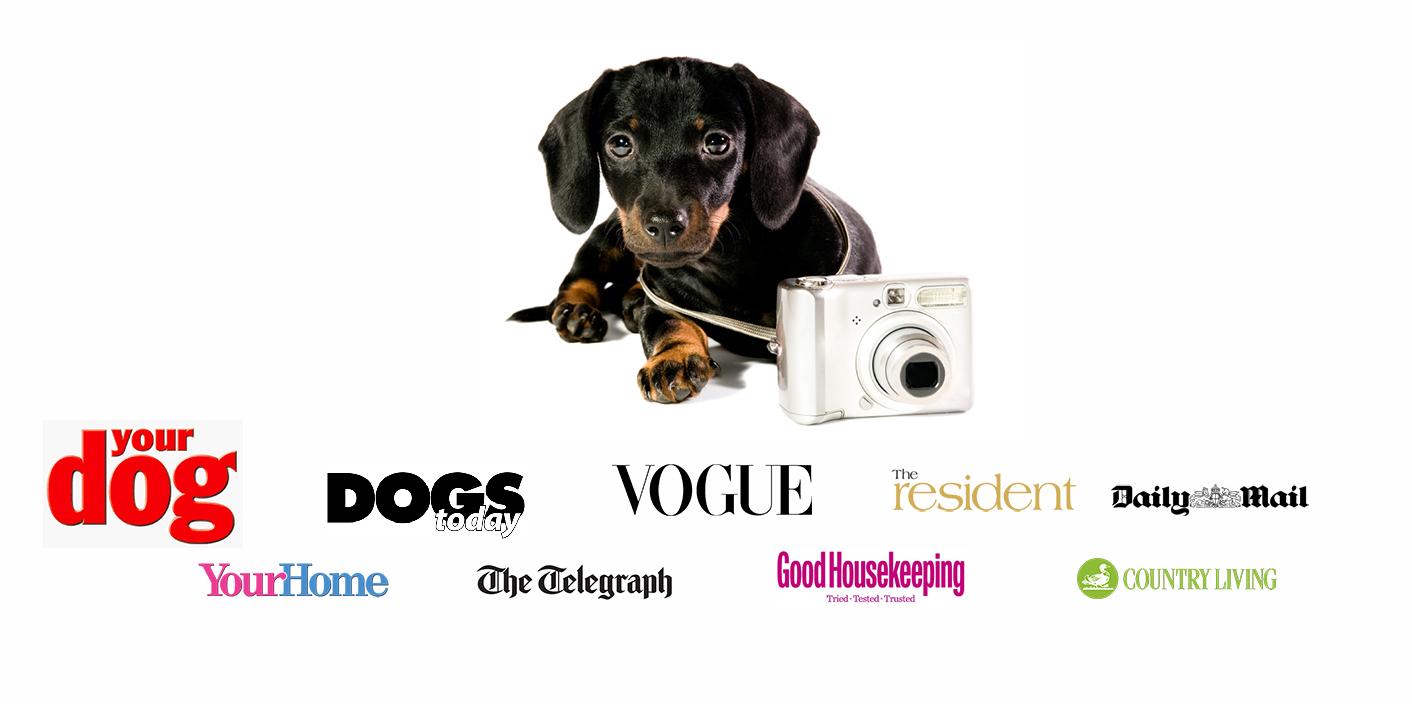 Chelsea Dogs Press Coverage