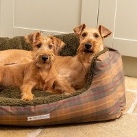 Snuggle Dog Beds at Chelsea Dogs