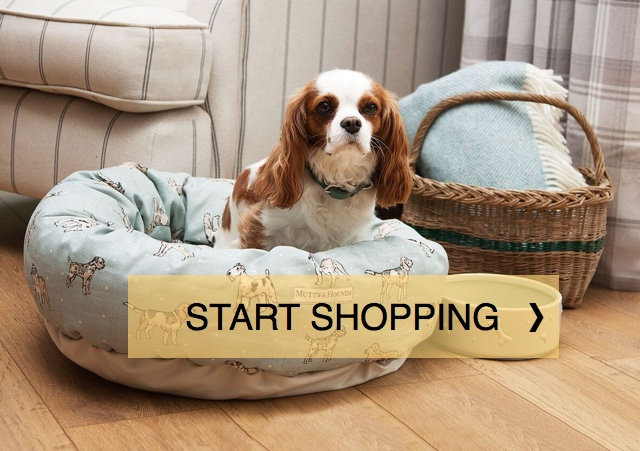 Shop at Chelsea Dogs